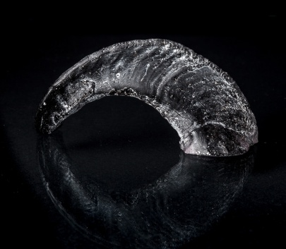 GLASS-HORN-3-LOW